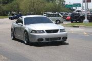 Silver Cobra Mustang