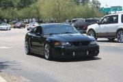 Black Cobra Mustang